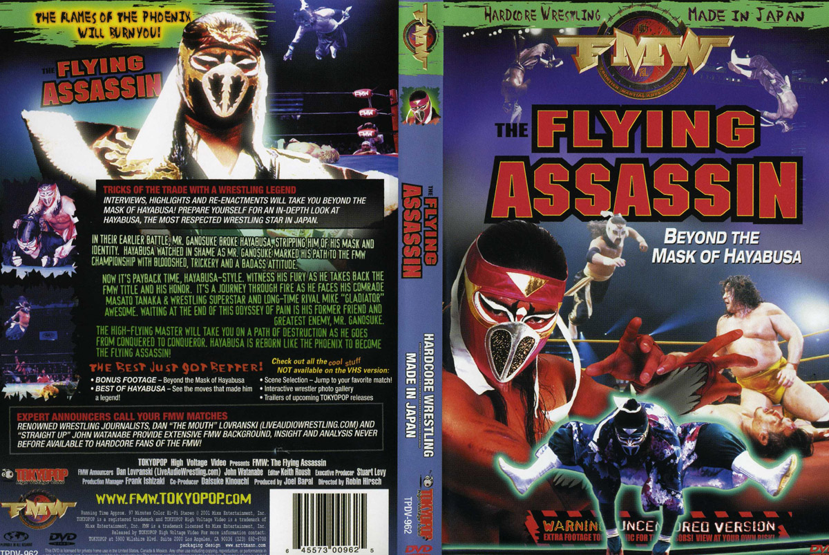 Flying assasin - Beyond the Mask of Hayabusa
