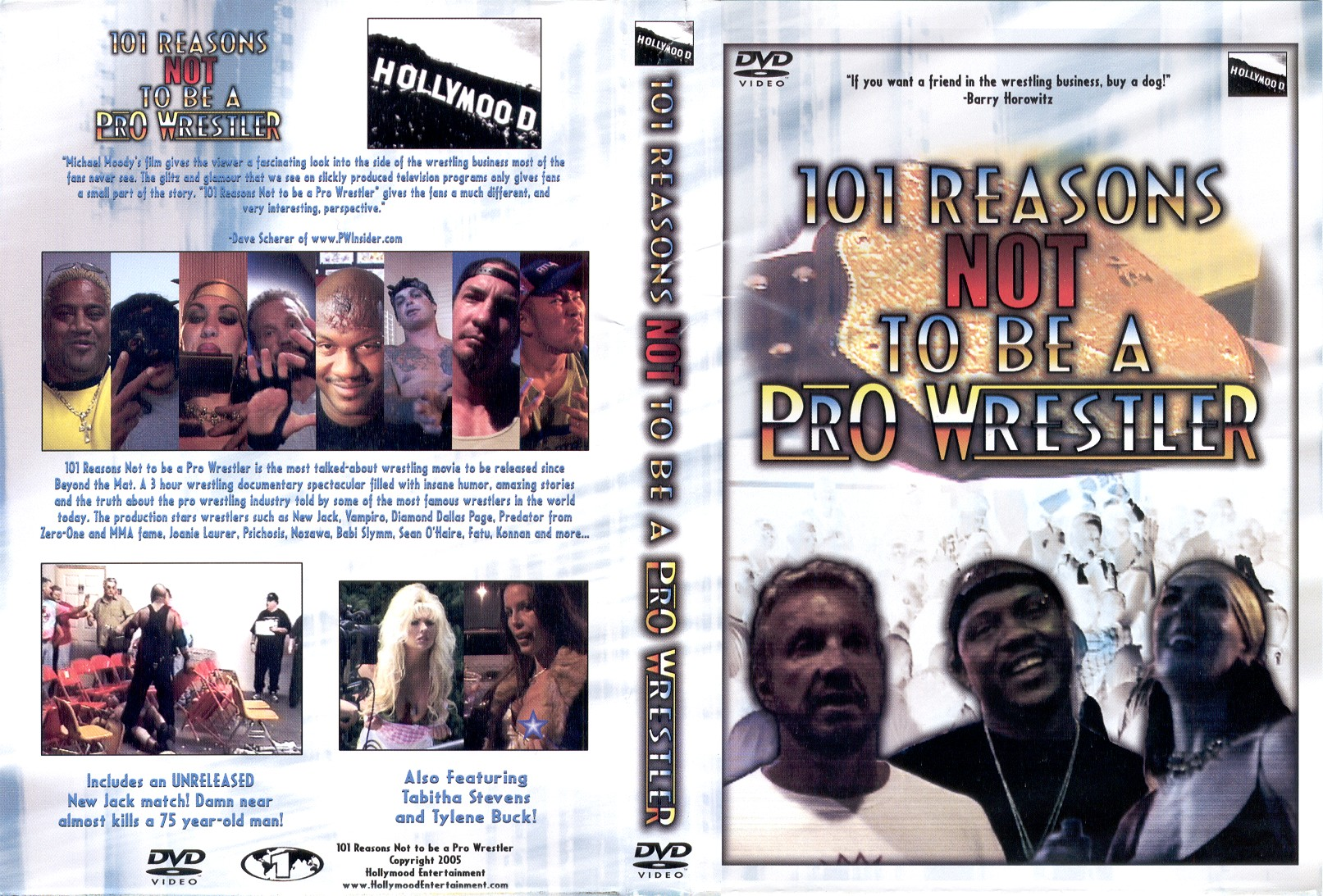 101 reasons not to be a prowrestler