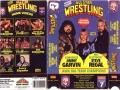 All_Star_Wrestling_Tag_Team_Champions