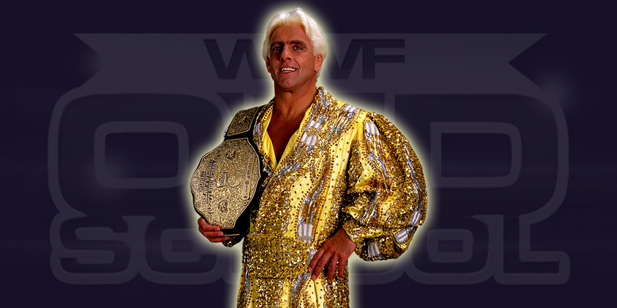 Ric Flair as WCW World Heavyweight Champion