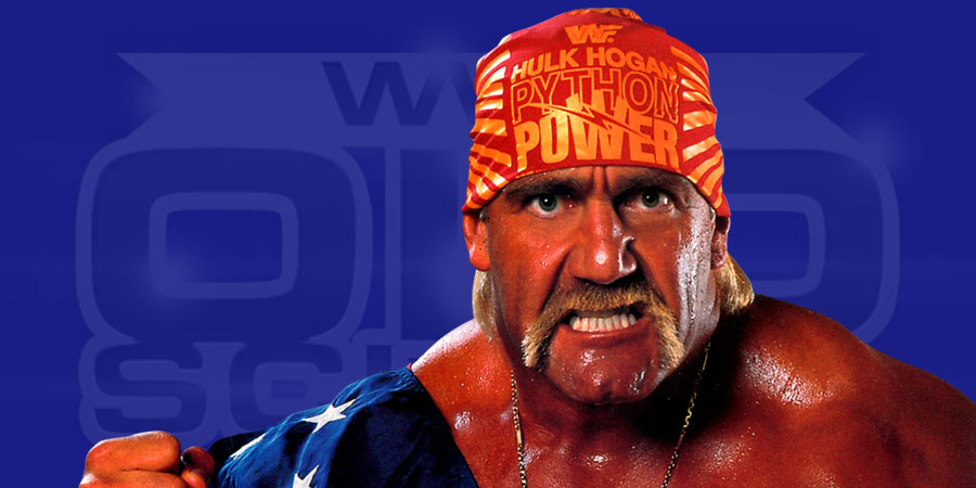 Hulk hogan and wwe-1255