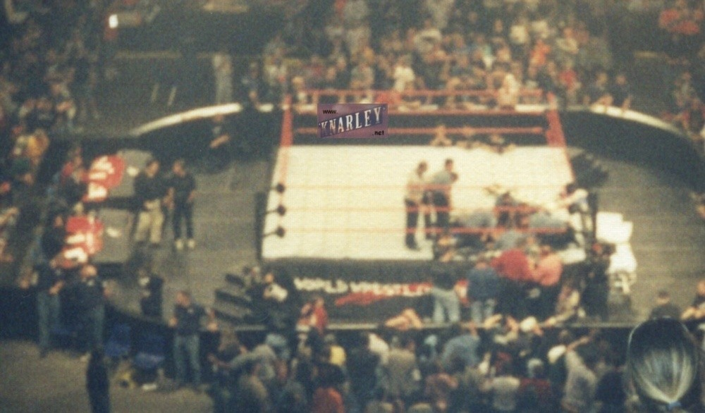 Owen Hart's Death 3