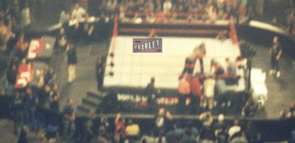 Owen Hart's Death 5