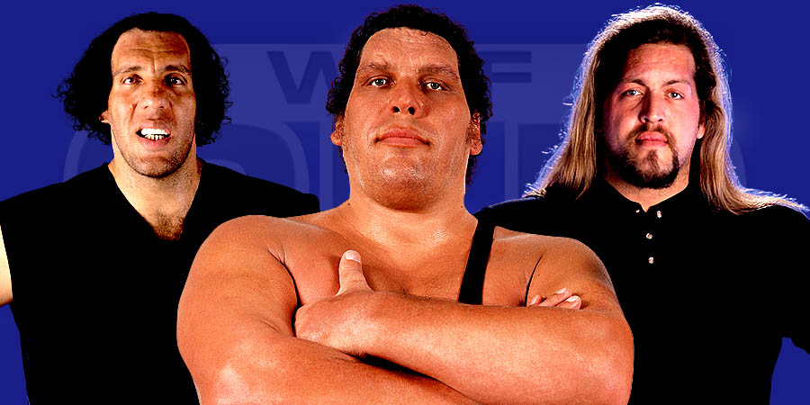 10 Tallest Pro-Wrestlers Of All Time