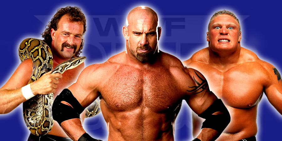 Jake Roberts, Goldberg, Brock Lesnar