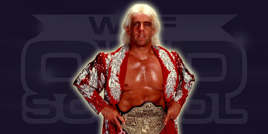Ric Flair as the WCW World Heavyweight Champion