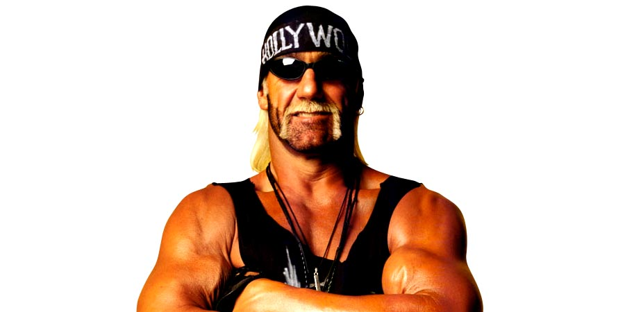 Hollywood Hogan nWo