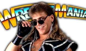 Shawn Michaels WrestleMania 35