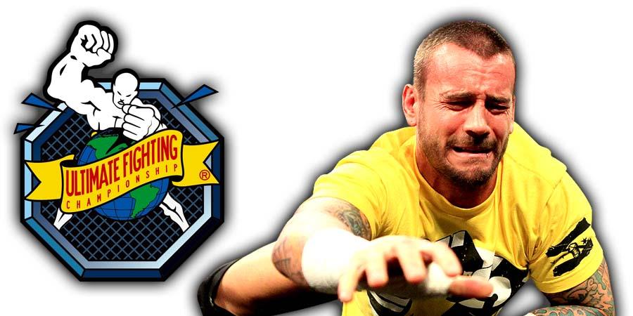 CM Punk Loses In UFC