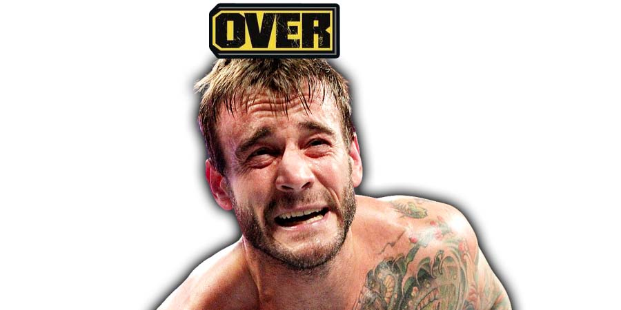 CM Punk UFC Career Over After UFC 225 Loss