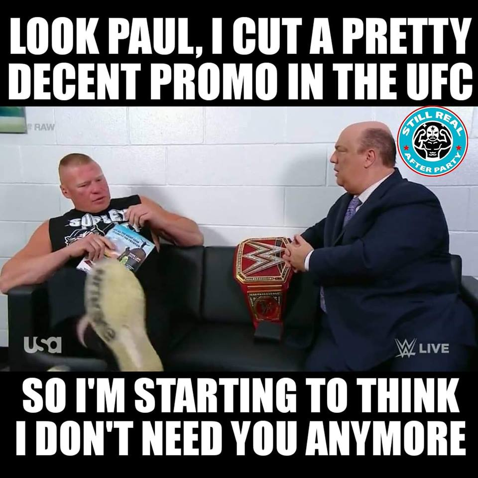 Brock Lesnar Reading A Book Meme 6