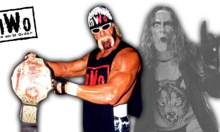 Hulk Hogan Sting nWo WCW