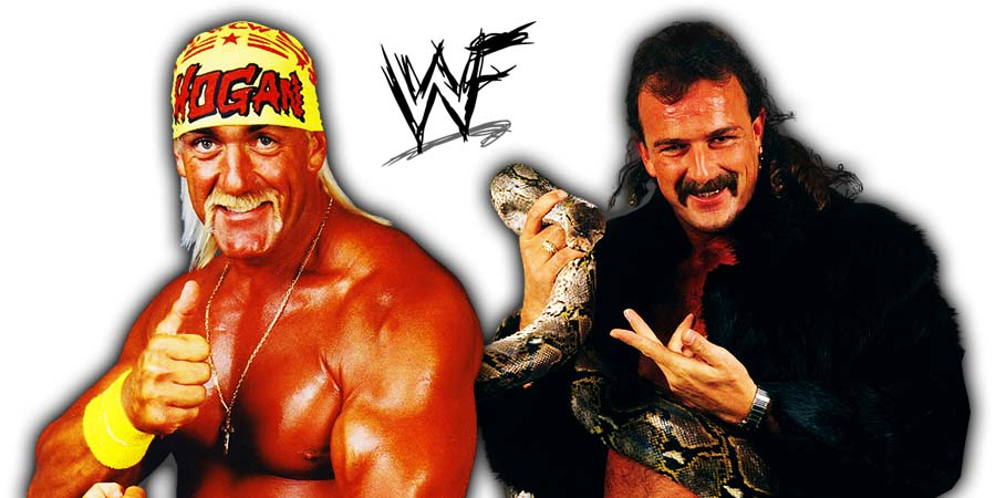 Hulk Hogan Jake Roberts WWF