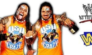 Usos The Uso Brothers WWE