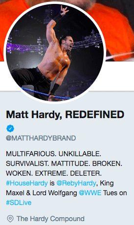 Matt Hardy Multifarious