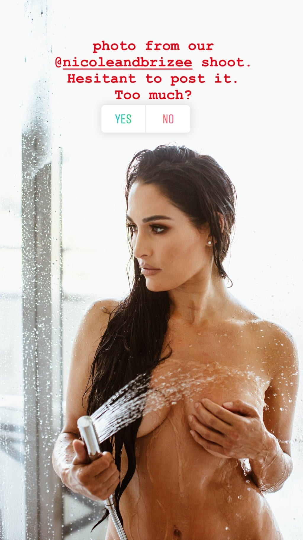 WWE News: Nikki Bella Posts Revealing Pictures On Social Media, Again 3