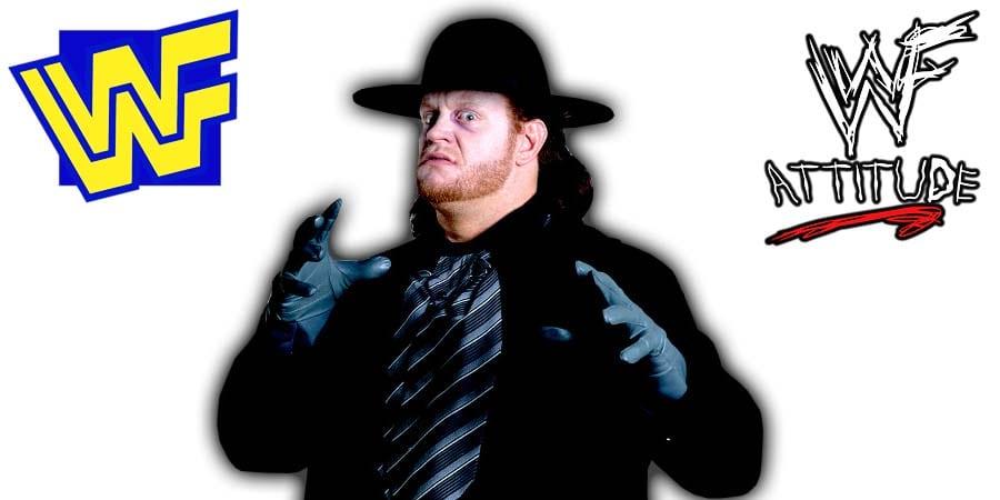 The Undertaker WWF 1990 1991