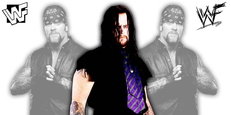 The Undertaker WWF 1994 2002