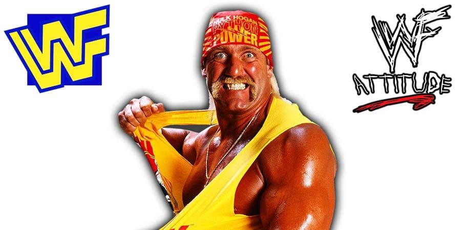 Hulk Hogan WWF Python Power