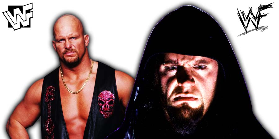 Stone Cold Steve Austin The Undertaker WWF 1999