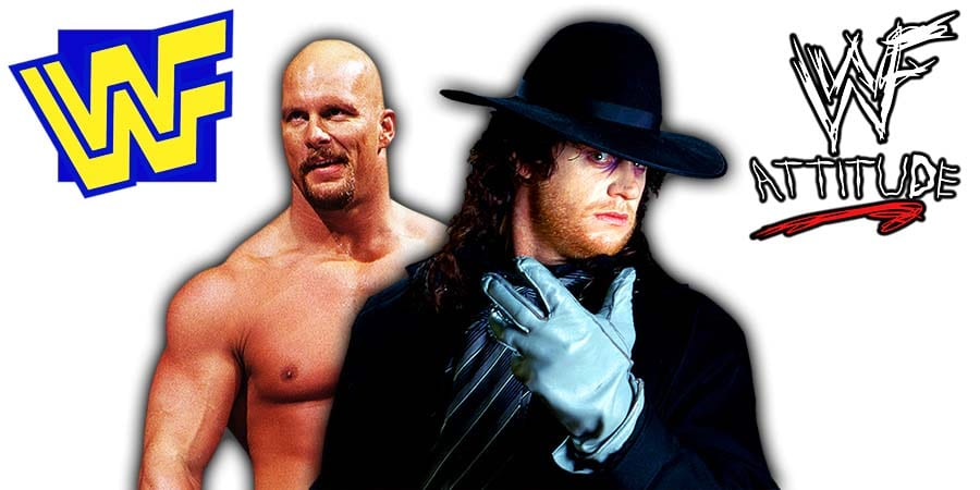 Stone Cold Steve Austin The Undertaker WWF