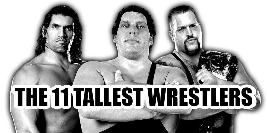 The 11 Tallest Pro-Wrestlers Of All Time