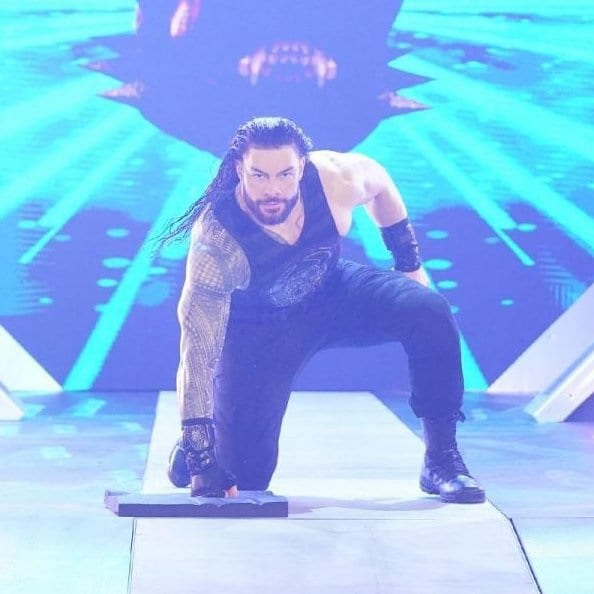 Roman Reigns Entrance Punch Protective Pad