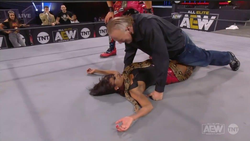 Jake Roberts Puts His Snake On Brandi Rhodes On AEW Dynamite