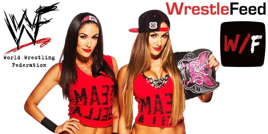 Bella Twins Nikki Bella Brie Bella Article Pic 1 WrestleFeed App