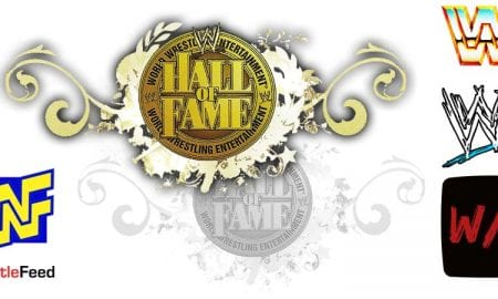 Hall of Fame Logo WWF WWE Article Pic 3 WrestleFeed App