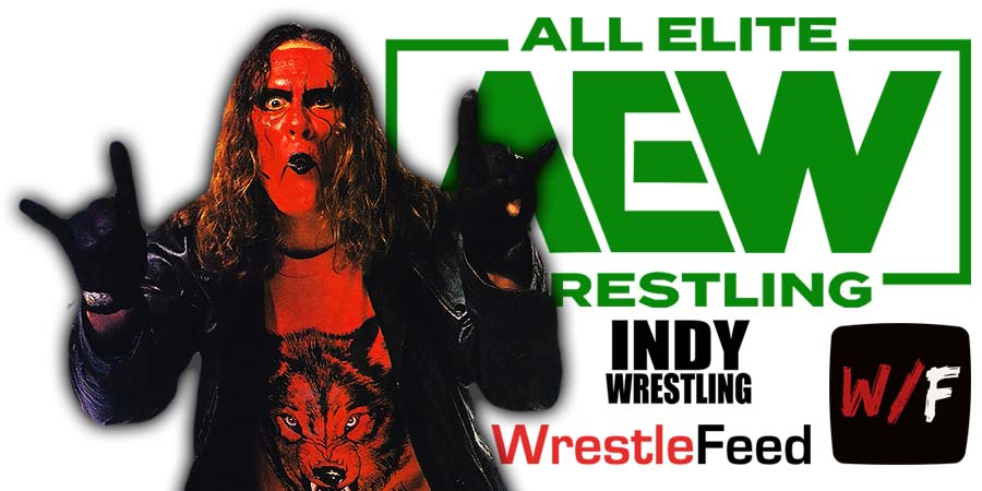 Sting AEW All Elite Wrestling Article Pic 12