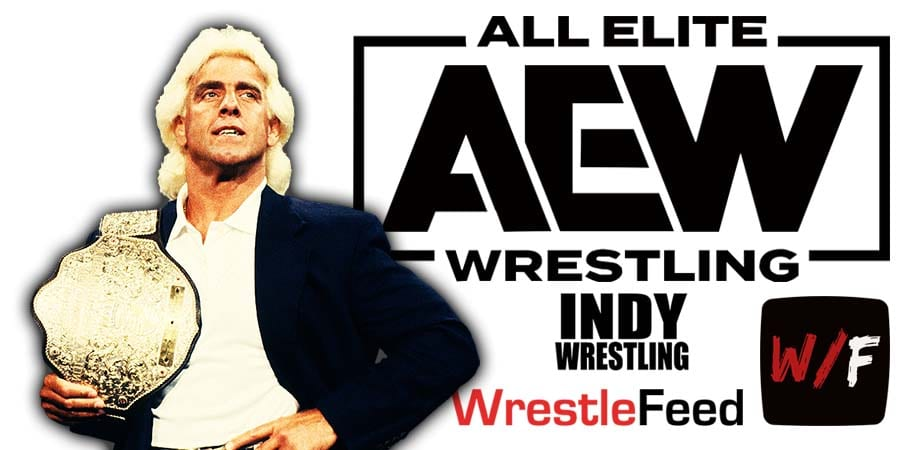 Ric Flair AEW All Elite Wrestling Article Pic 1 WrestleFeed App