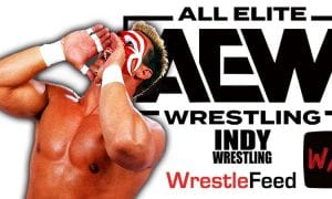Sting AEW All Elite Wrestling Article Pic 15 WrestleFeed App