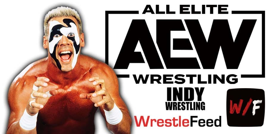 Sting AEW All Elite Wrestling Article Pic 18 WrestleFeed App