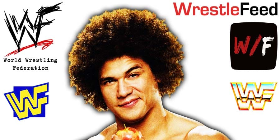 Carlito Caribbean Cool Article Pic 5 WrestleFeed App