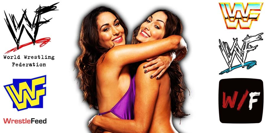 Bella Twins Nikki Bella Brie Bella Article Pic 3 WrestleFeed App
