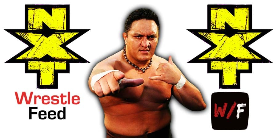 Samoa Joe NXT Article Pic 2 WrestleFeed App