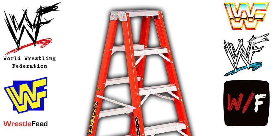 Ladder TLC Match Article Pic 1 WrestleFeed App
