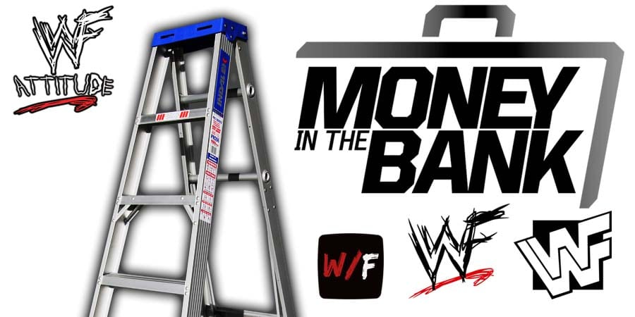 Money In The Bank Ladder Match Article Pic 4 WrestleFeed App
