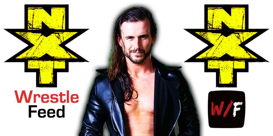 Adam Cole NXT Article Pic 5 WrestleFeed App