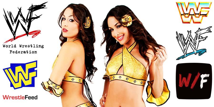 Bella Twins Nikki Bella Brie Bella Article Pic 4 WrestleFeed App