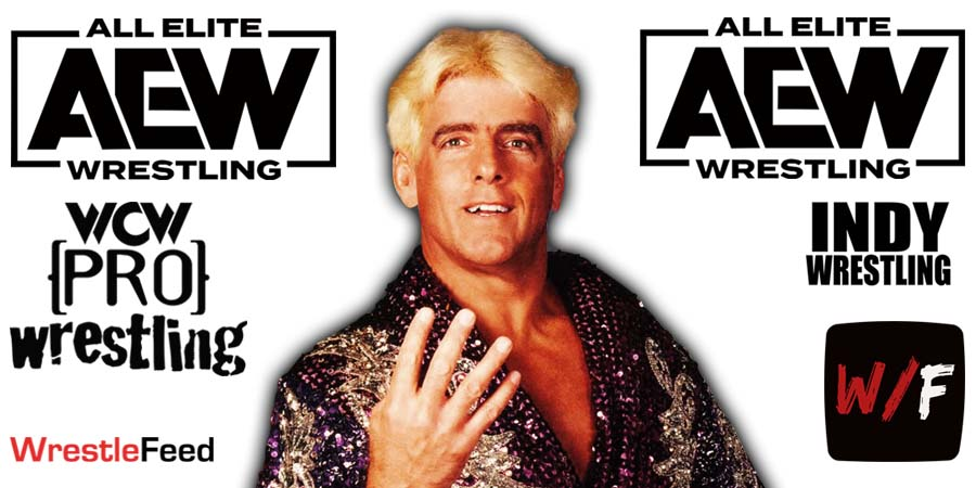 Ric Flair AEW All Elite Wrestling Article Pic 2 WrestleFeed App