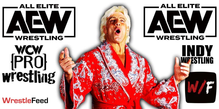 Ric Flair AEW All Elite Wrestling Article Pic 3 WrestleFeed App