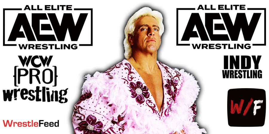Ric Flair AEW All Elite Wrestling Article Pic 4 WrestleFeed App