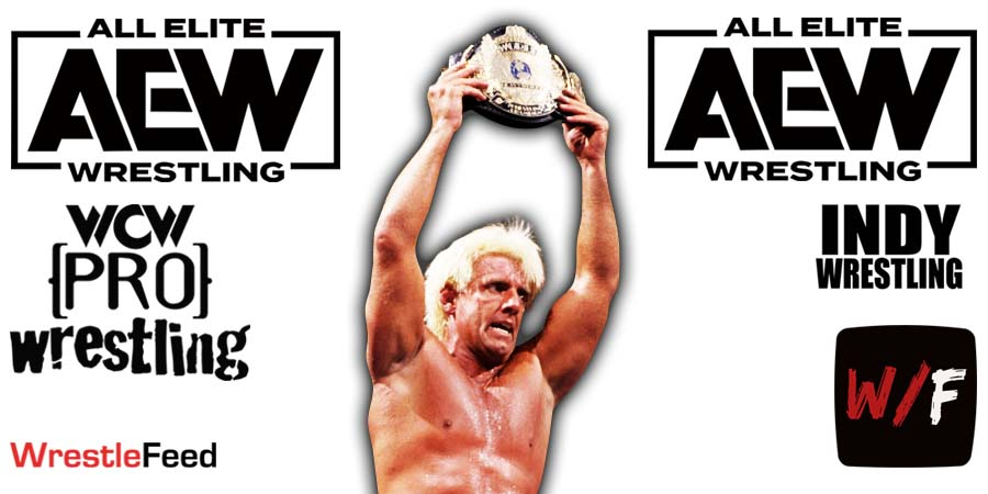 Ric Flair AEW All Elite Wrestling Article Pic 5 WrestleFeed App