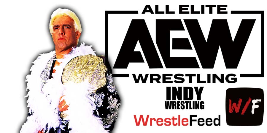 Ric Flair AEW All Elite Wrestling Article Pic 6 WrestleFeed App