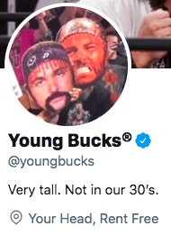 Young Bucks React To Vince McMahon's New Idea About NXT