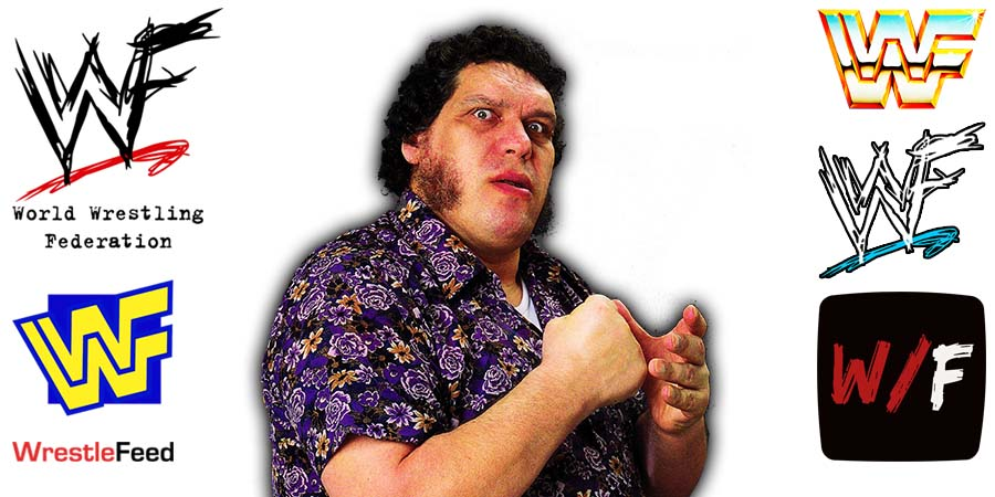Andre The Giant Article Pic 2 WrestleFeed App