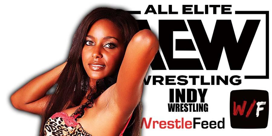 Brandi Rhodes AEW Article Pic 1 WrestleFeed App