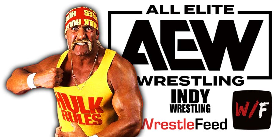 Hulk Hogan AEW Article Pic 3 WrestleFeed App
